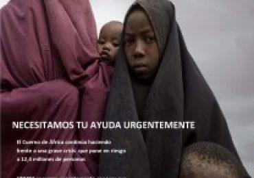 Fundación Cajamurcia y UNICEF, una cooperación por los derechos de la infancia.