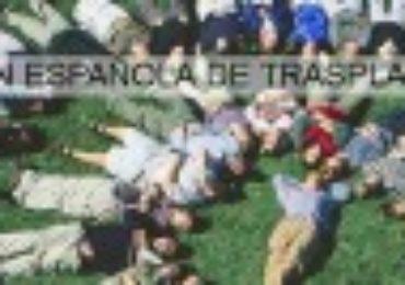 Semana Solidaria de la Asociación Española de Trasplantados