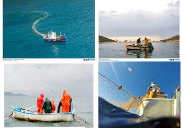 Regreso al futuro. El valor de la pesca sostenible.