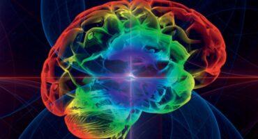 Vida, Consciencia y Cosmovisión