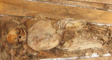 De Cervantes y otros huesos