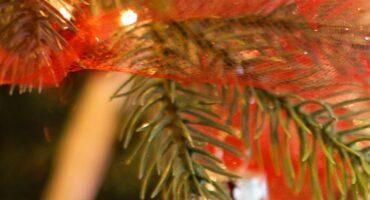 Función de Navidad del Colegio San Francisco de Asís de Lorca