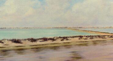 Salinas y arenales