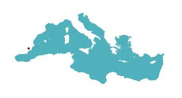 I Congreso Internacional Arte, Naturaleza y Paisaje en el Mediterráneo