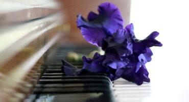 Piano con mucho gusto