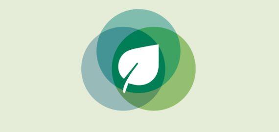 CaixaBank y Fundación Cajamurcia convocan ayudas por 100.000 euros para proyectos medioambientales en la Región de Murcia