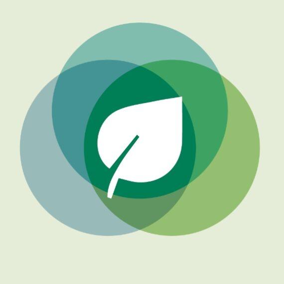 Bankia y la Fundación Cajamurcia apoyan con 20.000 euros dos proyectos medioambientales