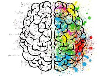 XVIII Semana Mundial del Cerebro en Murcia 2021
